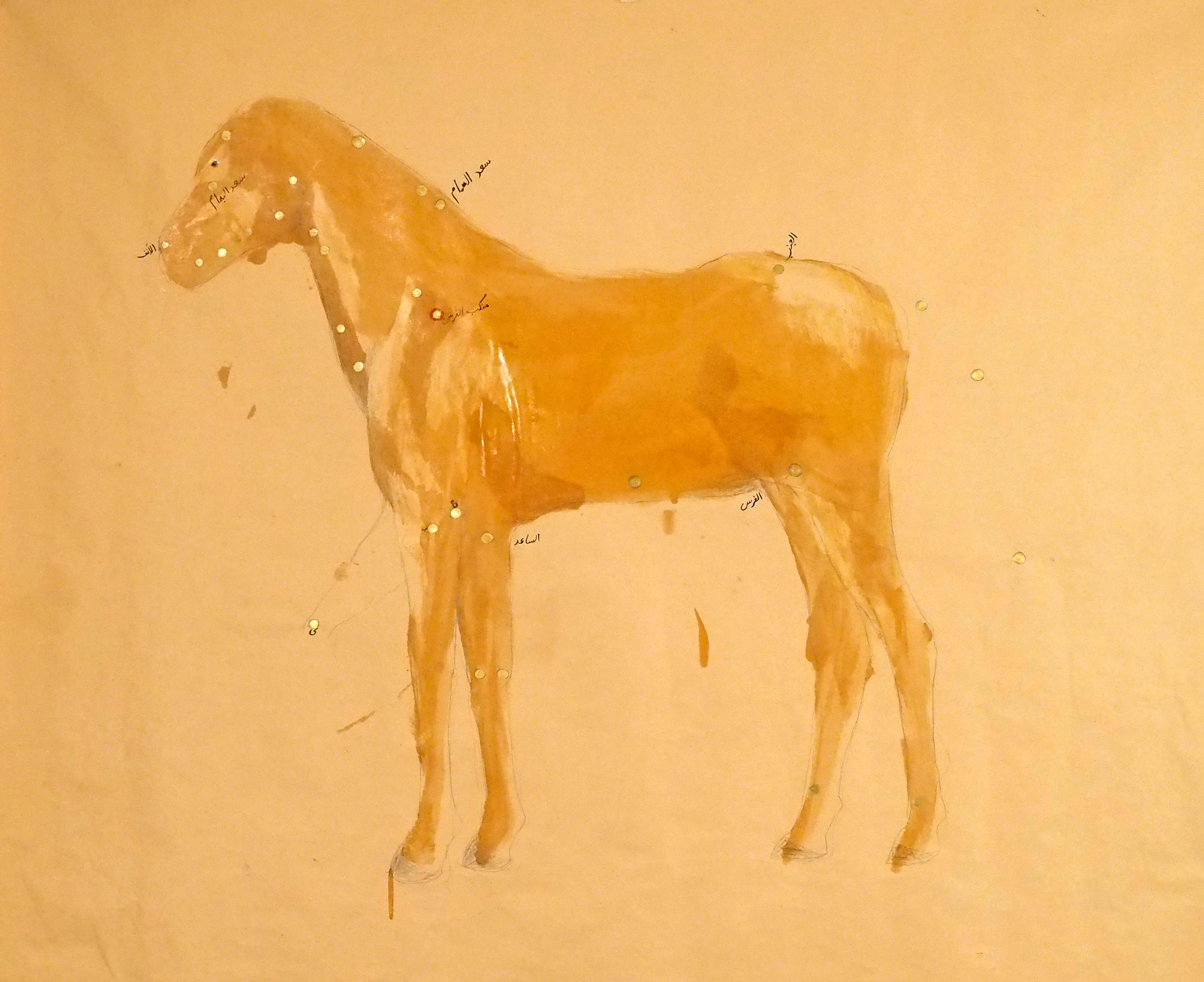 Avish Khebrehzadeh, Imaginary Fixed Stars 3 (Pegasus), 1996-2014, resina su carta, 54x68,5 pollici