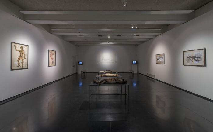 Spaziani, Febbraio 2016, MACRO, installation view, foto G. Benni