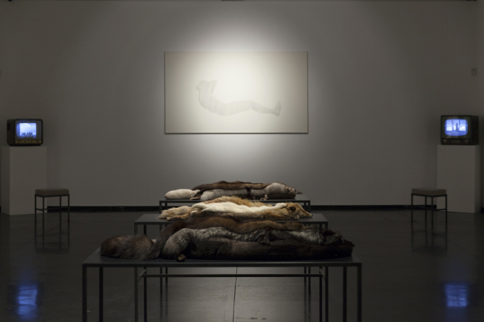 Spaziani, Febbraio 2016, MACRO, installation view, foto Y. Tavani